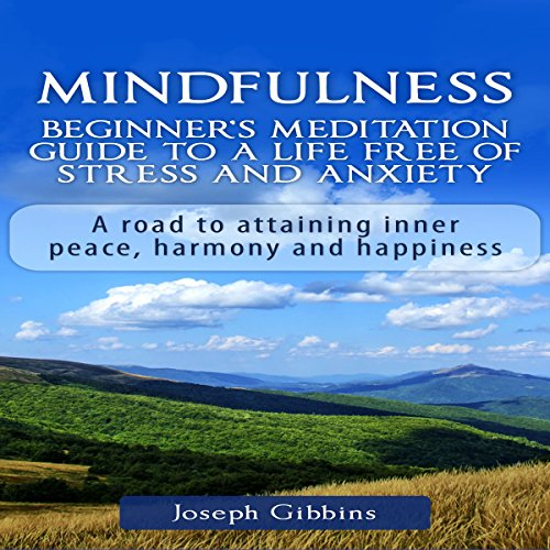 Mindfulness: Beginner's Meditation Guide to a Life Free of Stress and Anxiety audiobook cover art