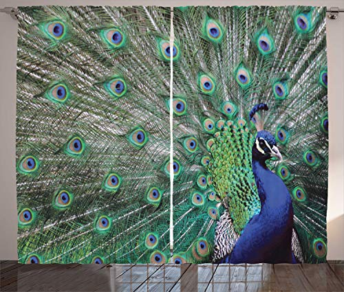 """Ambesonne Peacock Curtains, Peacock Displaying Elongated Majestic Feathers Open Wings Picture, Living Room Bedroom Window Drapes 2 Panel Set, 108"""" X 84"""", Brown Navy"""