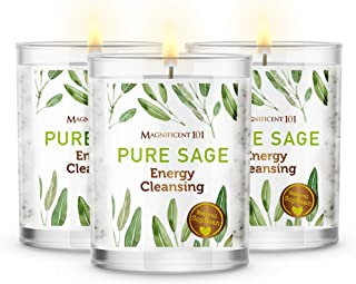 Magnificent101 Pure Sage Smudge Set of 3 Candles for House Energy Cleansing, Banish Negative Energy I Purification and Cha...