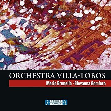 Orchestra Villa-Lobos
