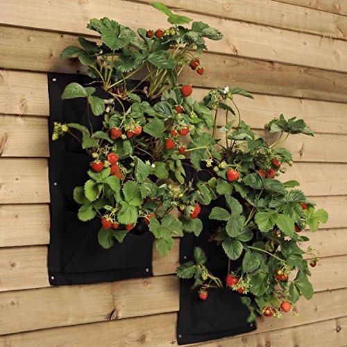 Tasca per piantare Verde, Verticale Verde Crescere Piantatore, Pratico sacchetto verticale da appendere alla parete per coltivare fiori patate fragole
