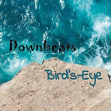 Bird's-Eye