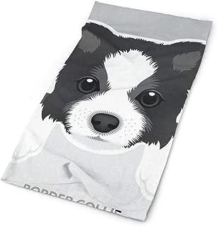 Headband Border Collie Puppy Outdoor Scarf Mask Neck Gaiter Head Wrap Sweatband Sports Headwear