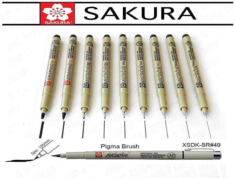 Sakura Pigma Micron 003,005,01,02,03,05,08,1mm,2mm, Brush, Made in Japan B07HY55DVB | Lebensecht