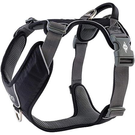 Dog Copenhagen Hundegeschirr V2 Comfort Walk Pro Black Größe Xl Haustier