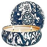 AMAYGA Citronella Kerze Duftkerzen in Dose,425g Kerze 100% Sojawachs Outdoor Indoor,Citronella Kerzen für Garten