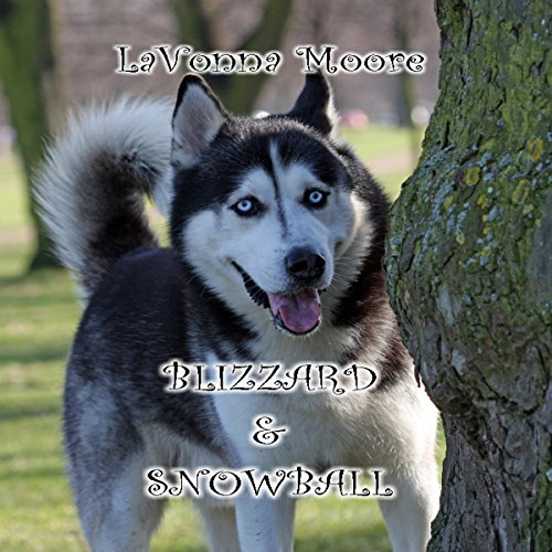 Blizzard & Snowball audiobook cover art