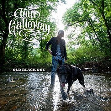 Old Black Dog - Single