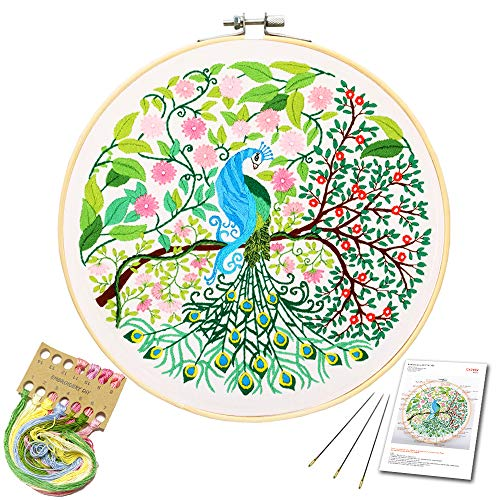 Embroidery Starter Kit with Peacock Pattern and Instructions, Embroidery kit for Beginners, Cross Stitch Set, Full Range of Stamped Embroidery Kits