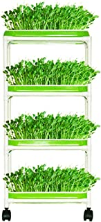 Seed Sprouter Trays with 4 Layers Shelf Soil-Free Healthy Wheatgrass Seeds Grower and Storage Trays for Garden Home