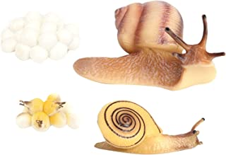 freneci Lifelike Growth Cycle Snail Models Life Cycle Insect Figure Toys Education Biology Science Toys