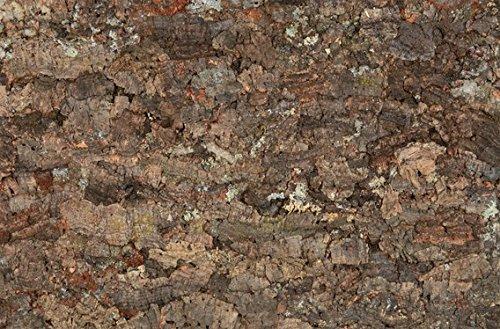 TRIXIE 4 Fondo Natural, TraseroyLateral,Terrarios,60x30cm, Reptiles