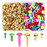 MAMUNU 500 Pieces Assorted Sizes Split Pins, Multicolor and Round Brass Plated Paper Fasteners, DIY Art Craft...
