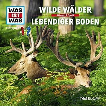 54: Wilde Wälder / Lebendiger Boden