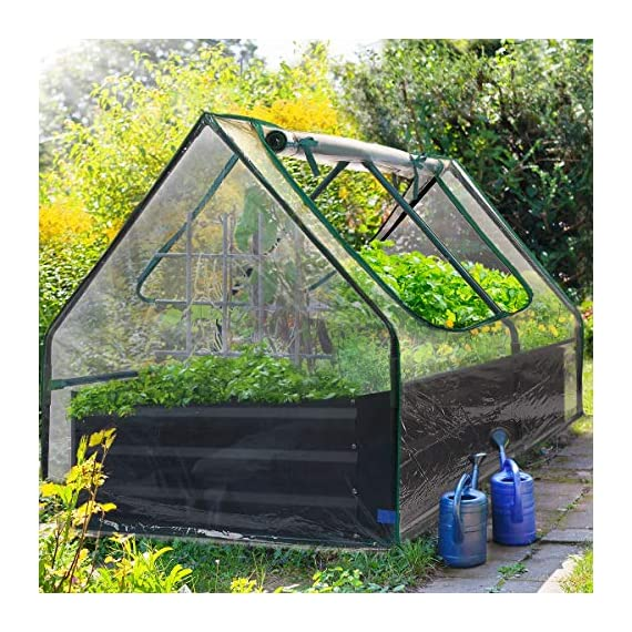 Quictent 49''x37''x36'' Extra-Thick Galvanized Steel Raised Garden Bed Planter Kit Box with Greenhouse 2 Large Zipper… 7 √【Dual Use Raised Bed】Use the raised garden bed and greenhouse together to keep plants warm and growing in winter and spring. Or move the greenhouse to keep other small plants to grow, do as your need. Give you more freedom to use these two parts. √【Extra-thick Reinforced Galvanized Steel】--- 0.5mm thickness galvanized side, 1.0mm galvanized sheet for corner, 11.8inch in height, perfect size with extra-thick steel, stable for using at least 5 years. √【Eco-friendly Galvanized Paint】--- Use eco-friendly galvanized paint, efficiently prevent rust; And with the advanced dark grey, the most popular color, give your garden more beauty. Also never worry about that pest and rain damage the wood garden bed; galvanized steel garden bed provides lasting use and no discoloration.
