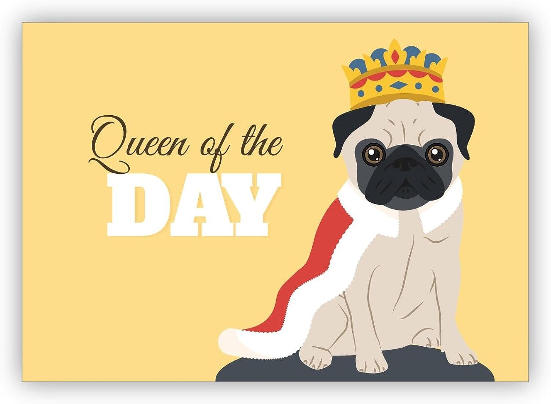 Im 16er 16er 16er Set privat & gewerblich  Lustige Geburtstagskarte mit Mops als König auch als motivierende Grußkarte für sie  Queen of the Day - auch für Firmen Kunden und Geschäftspartner B079R7R7H3 | Sale Online  dc3689