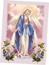 dailymall DIY 5D Diamond Embroidery Painting Cross Stitch Kit Virgin Mary - Virgin Mary, as described
