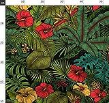 Tropisch, Banane, Hibiskus, Dschungel, Blätter, Monstera,