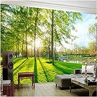 Xbwy 装飾壁画ガーデンビュー風景背景壁壁画壁紙リビングルームベッドルーム家の装飾-120X100Cm