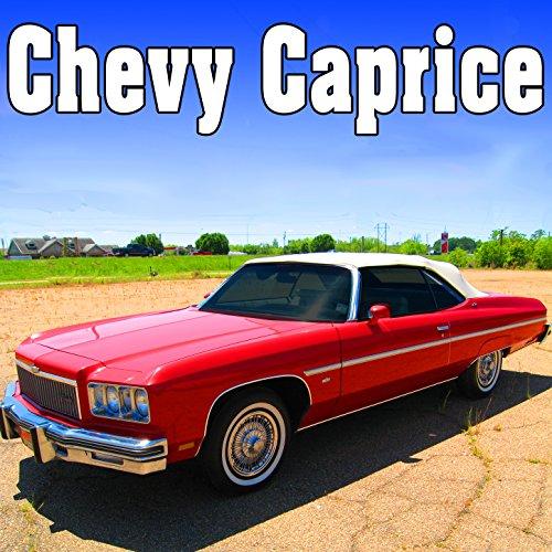 Chevy Caprice Yelp Siren, Starts, Runs & Stops