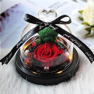 Regalo de la decoración de la Familia de la Flor de la Rosa del Oso de Peluche de la Rosa roja-B24