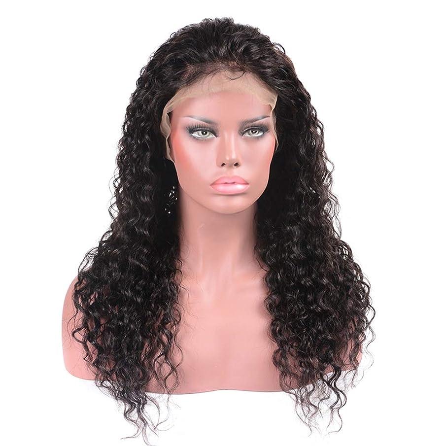 先住民シェア孤児BOBIDYEE ブラジルの髪の水の波ロングカーリーウィッグ100%本物の人間の髪の毛のレースフロントかつら(8インチ - 22インチ)パーティーウィッグ (Color : ブラック, サイズ : 8 inch)