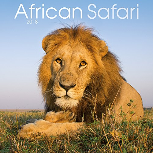 Turner Licensing Turner Photographic African Safari 2018 Wall Calendar Office Wall Calendar (18998940002)