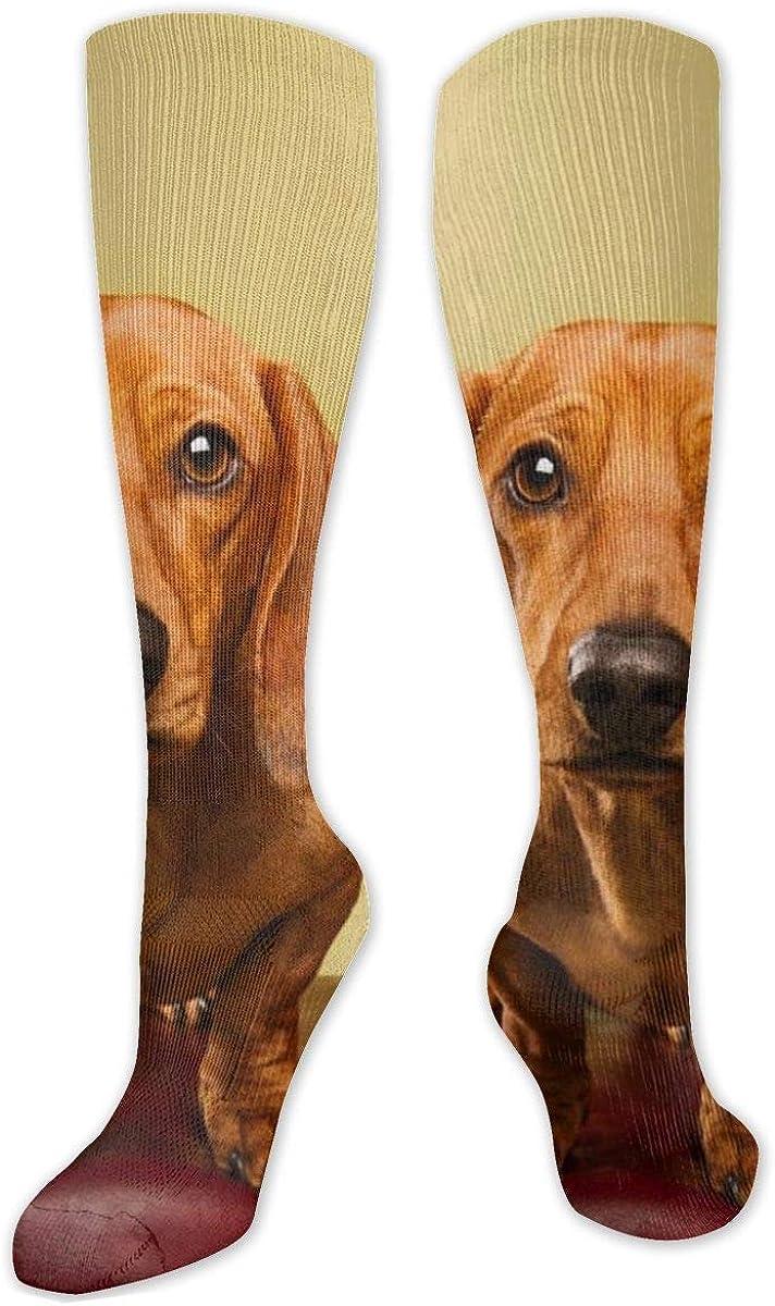 Cute Brown Dachshund Knee High Socks Leg Warmer Dresses Long Boot Stockings For Womens Cosplay Daily Wear