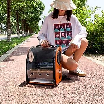 Henan Pet Perroquet Sac de transport pour oiseaux, capsule transparente, sac à dos respirant 33 x 17 x 38cm / 12.99 x 6.69 x 14.96in bleu