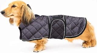 dachshund dog coats