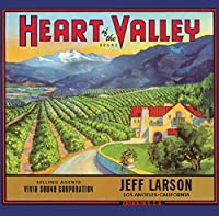 Heart of the Valley by JEFF LARSON