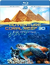 Adventure Coral Reef 3D - Under the Sea of Egypt