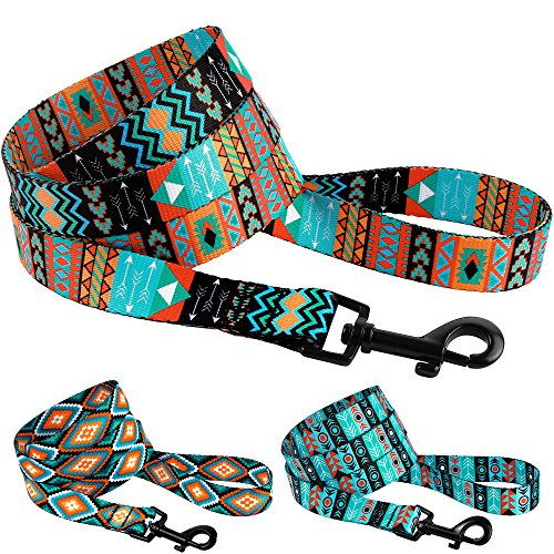 collardirect Nylon Hunde Leine 5 ft, Training Hundeleine, Design Welpen Leine für Hunde, Tribal Hund Leine Pet Leine klein medium large, L