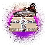 MFB Meerforellen Box // Meerforellen Kunstköder als Set für Mefos