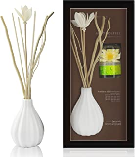 Best ceramic reed diffusers Reviews