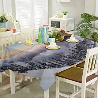 dsdsgog Wrinkle Free Tablecloths Roszutec Slovakia Mountain Fatra with Smoky Foggy Peak at Winter Panoramic Picture 54