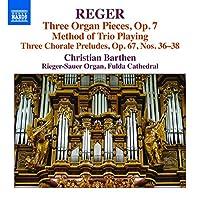 Reger: Organ Works Vol 16