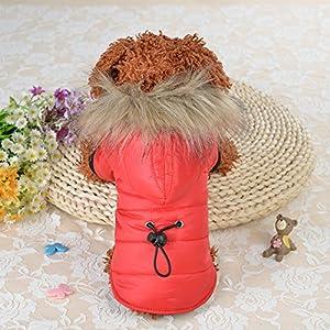 Amyove Manteau d'hiver Chaud Chiot Veste pour Petits et Moyens Chiens