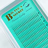 BIG EYE' S SECRET 2D Long Stem 0.15 Thickness D Curl Professional Eyelash Extension Kit Premade Volume Eyelash Makeup Beauty Premade Fans Russian Eyelashes Extension (2D 0.15D 15mm)