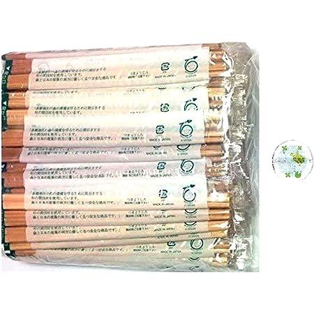 日本製 割り箸 21cm 間伐材使用の国産品 100膳 箸置き付 ( 個別包装 ) WS-100