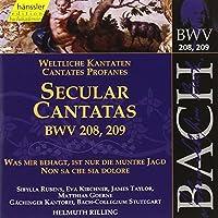Bach:Secular Cantatas