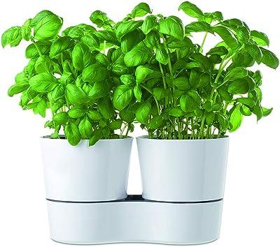 Mepal Hydro Herbs - Maceta Doble para Hierbas aromáticas, de plástico, 13,7x 22cm, 1Unidad, plástico, Weiß, 13.7 x 22 cm