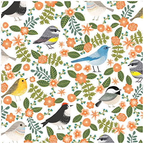 Jillson Roberts 6-Roll Count All-Occasion Floral Gift Wrap Available in 11 Different Designs, Little Birdies