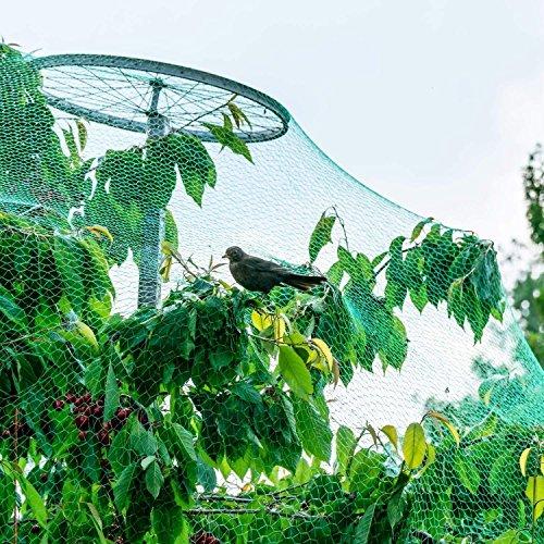 Zerone Filet de Protection Oiseaux, 4x10m Filet de Jardin Anti-Oiseau Anti-Feuilles Filet de Bassin en PE pour Protéger Légumes Fruits Plantes Bassin Jardin Balcon Volaille Elevage, Lot de 2pcs