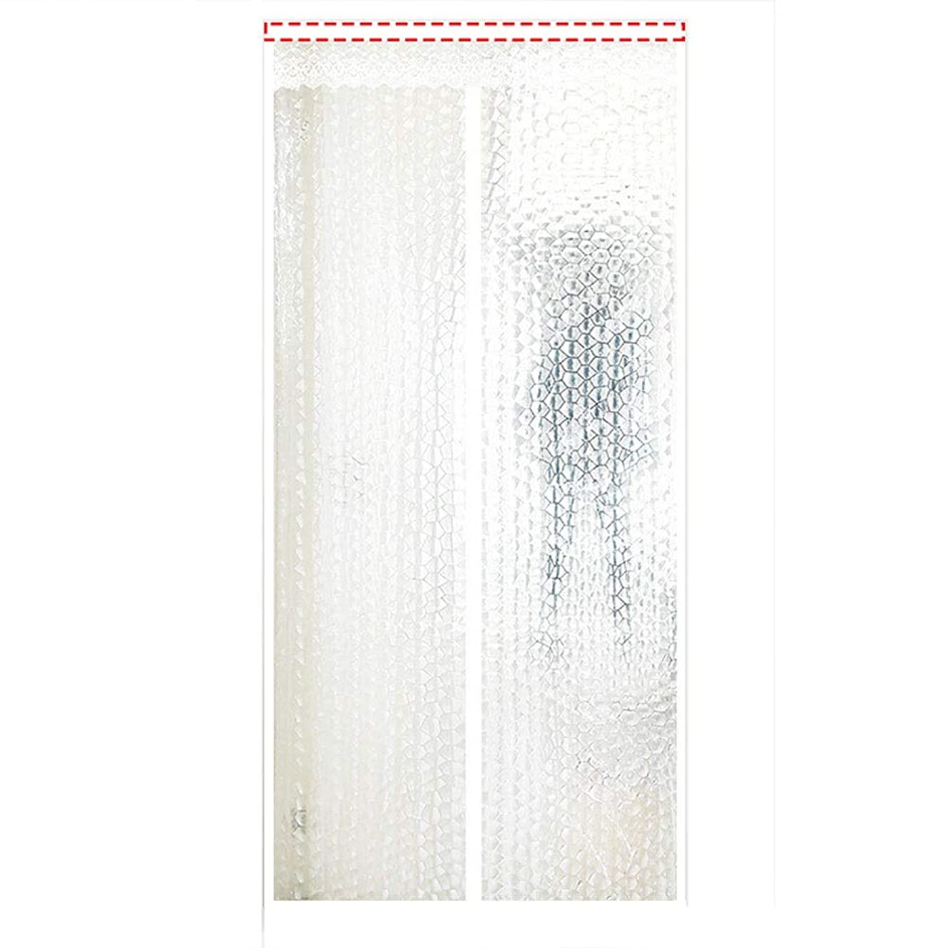 葉っぱ窓を洗う病弱フライスクリーンドア 防虫ドアエアコン気密ドアカーテン防蚊分離ヒューム保温?防風簡単設置隙間なし JFIEHG (色 : G, サイズ : 170x220)