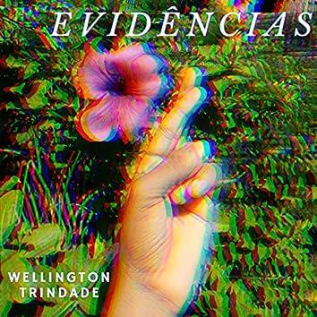 Evidências (Cover)
