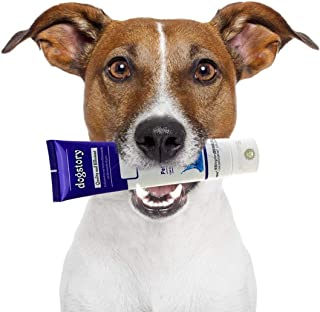 SunGrow Beef-Flavored Dog Toothpaste - Make Tooth Brushing a Joyful Experience