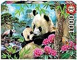 Educa Borras - Genuine Puzzles, Puzzle 1.000 piezas, Osos panda (17995)