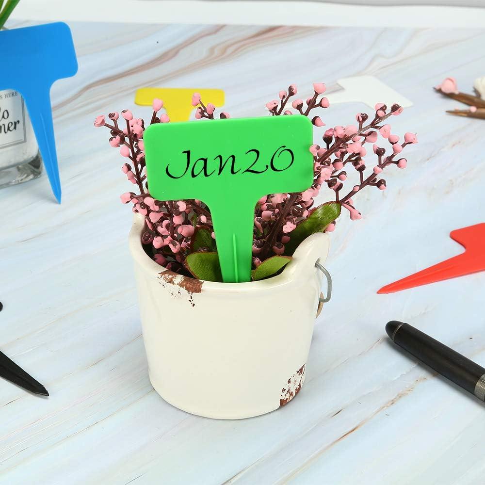 Bestechno Pflanzenetiketten kleines Werkzeug 100 St/ück Gartenzubeh/ör 6 x 10 cm