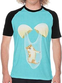 Shiba Baseball T Shirts Sleeve Graphic